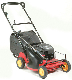 "Model N21-6.25GT-P Mclane 21"" trim mower push type with 6.25 hp Briggs engine with recoil start, easy height adjustment, rear bagging model with hard catcher."